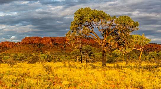 Melbourne, Outback & Uluru Adventure-Plus