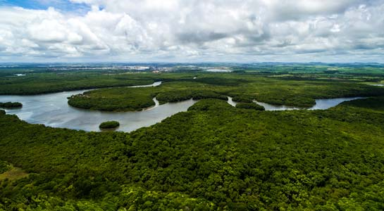 Ecuador: Amazon and Galápagos Islands