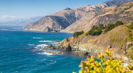 Northern California's Finest