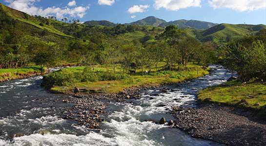 Costa Rica Family Journey: Rainforest To Coast