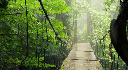 Natural Wonder's of Costa Rica