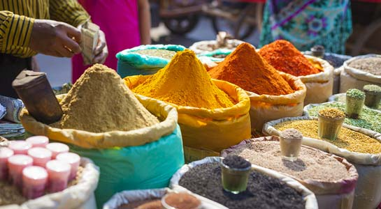 Colours of Rajasthan with Mumbai