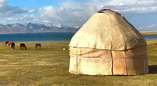 Discover Mongolia