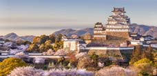 Japan & Far East Cruise