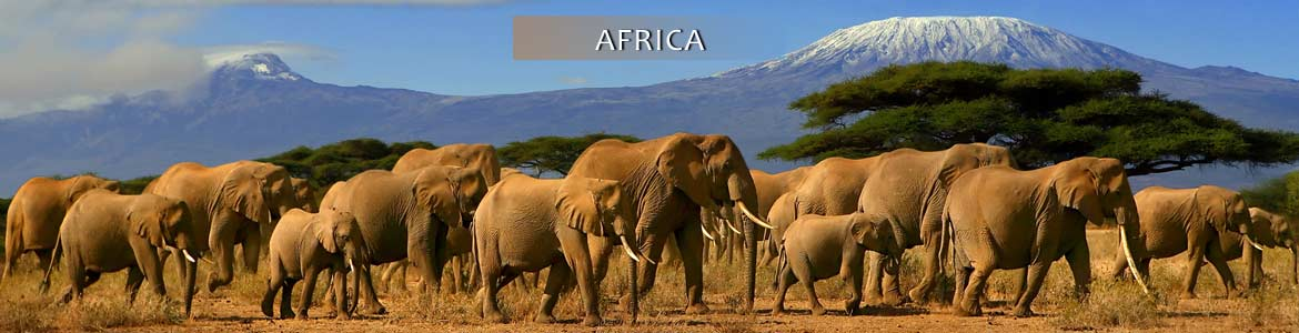 Globus Tours: Escorted Land Tours to Africa